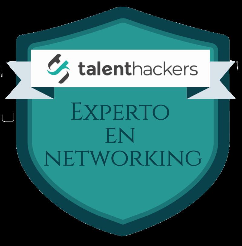 "Insignia ""Experto en Networking"""